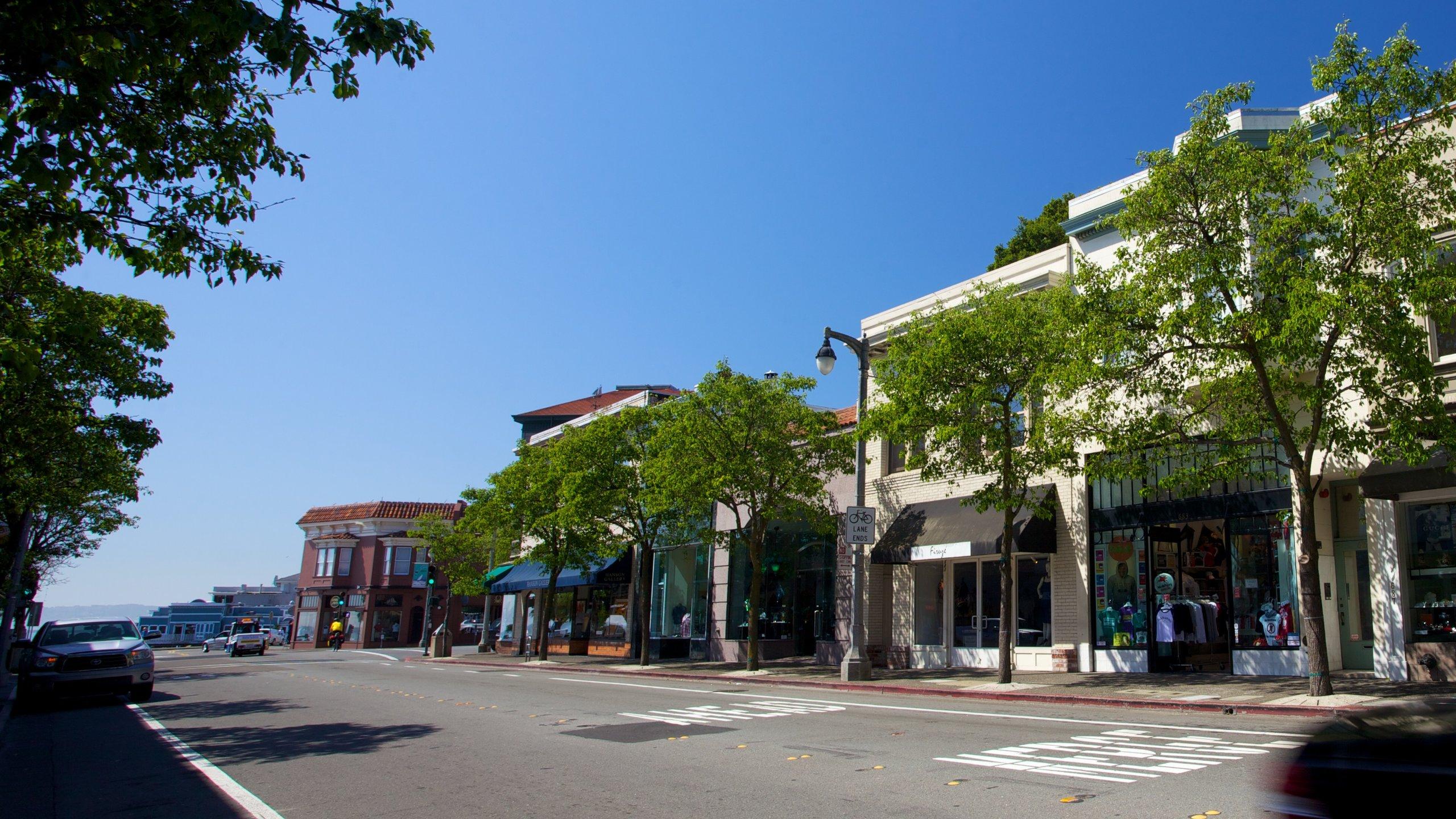 Marin County, California, USA