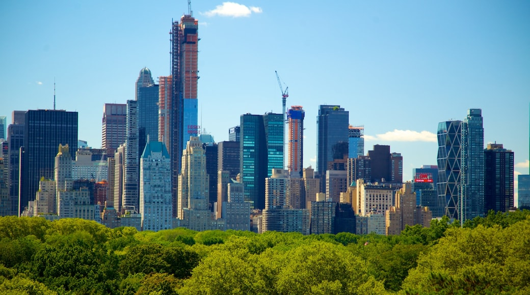 Metropolitan Museum of Art showing a city, city views and a high-rise building
