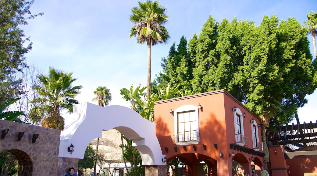 Parque Morelos que incluye un jardín