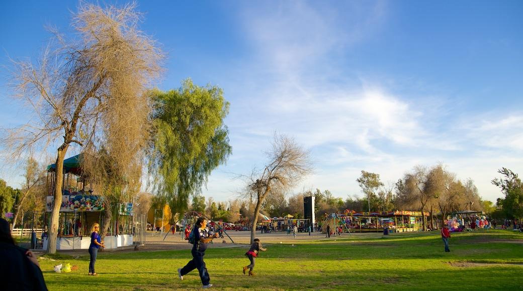 Parque Morelos mostrando un parque y vistas de paisajes y también niños