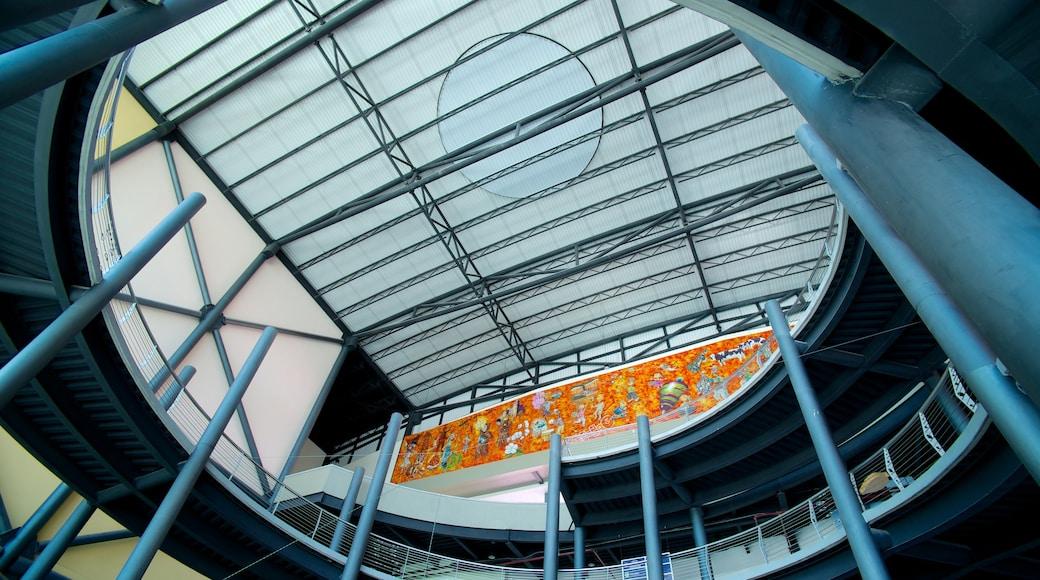 Museo interactivo El Trompo Tijuana mostrando arquitectura moderna y vistas interiores