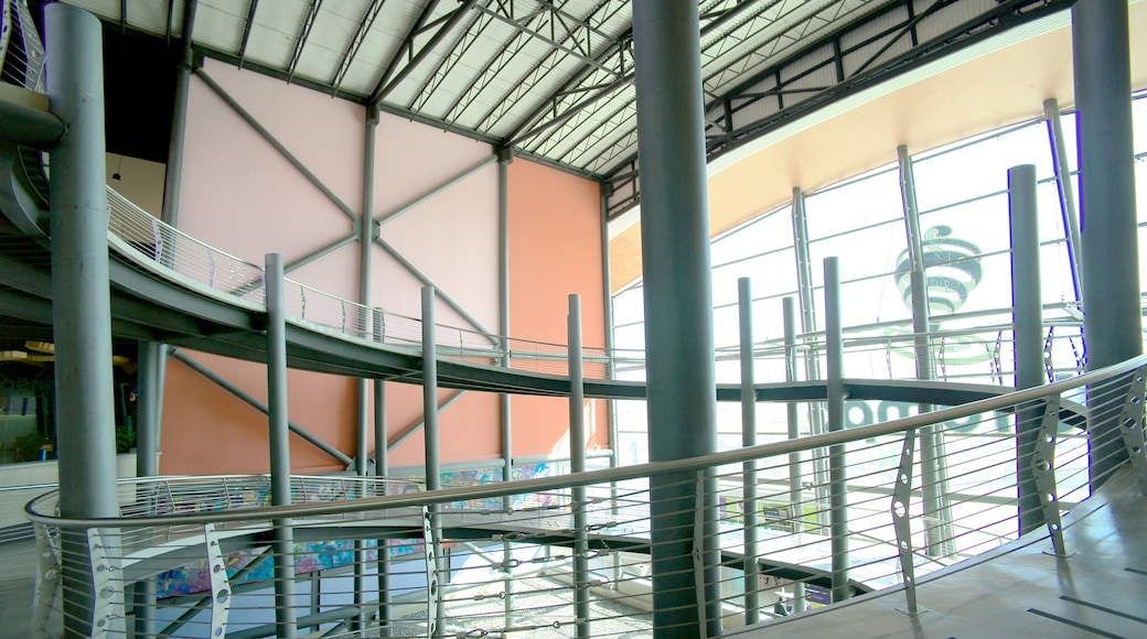 Museo interactivo El Trompo Tijuana ofreciendo vistas interiores
