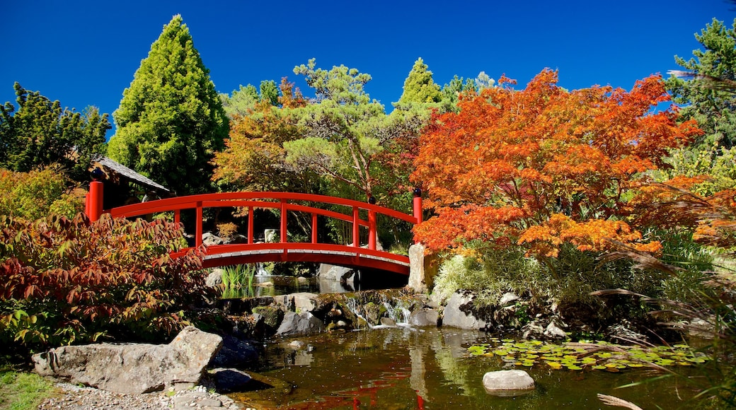 Royal Tasmanian Botanical Gardens featuring a bridge, a pond and a park