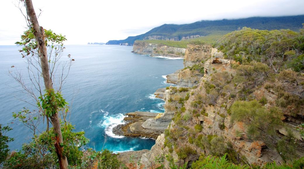 Hobart showing landscape views and rugged coastline