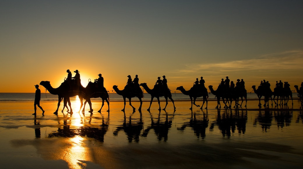 Cable Beach which includes a sandy beach, a sunset and landscape views
