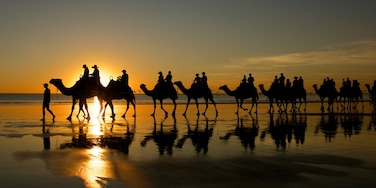 Cable Beach featuring a beach, a sunset and landscape views