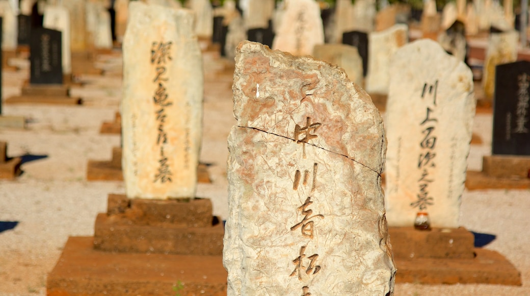 Japanese Cemetery showing a cemetery