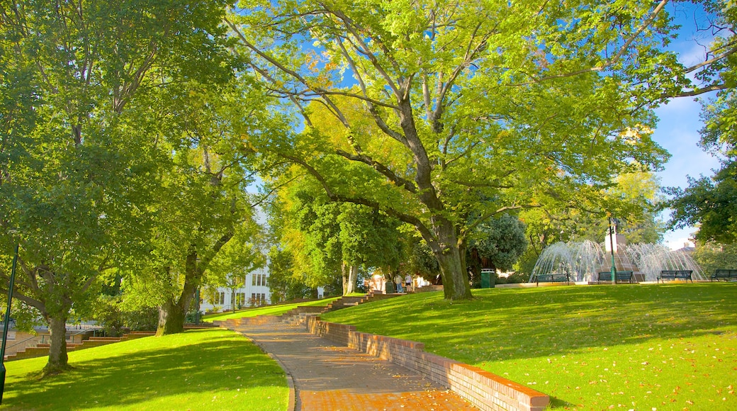 Franklin Square showing a garden