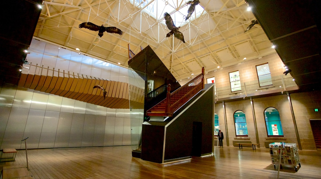 Tasmanian Museum and Art Gallery featuring interior views