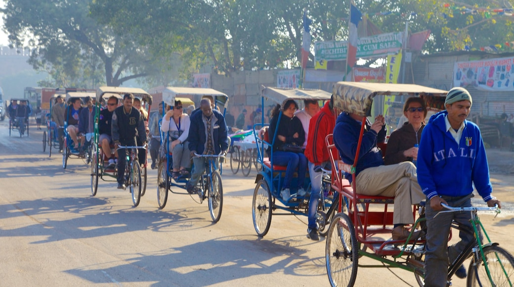 Chandni Chowk which includes street scenes and cycling as well as a large group of people