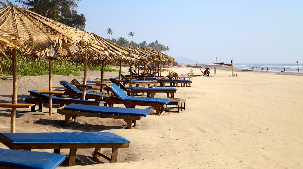 Ashvem Beach showing a sandy beach, tropical scenes and landscape views