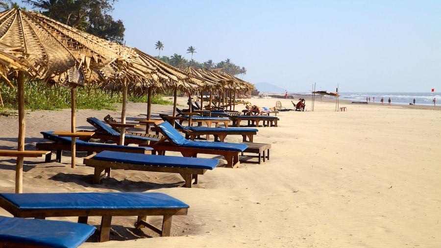 Estadio Goa