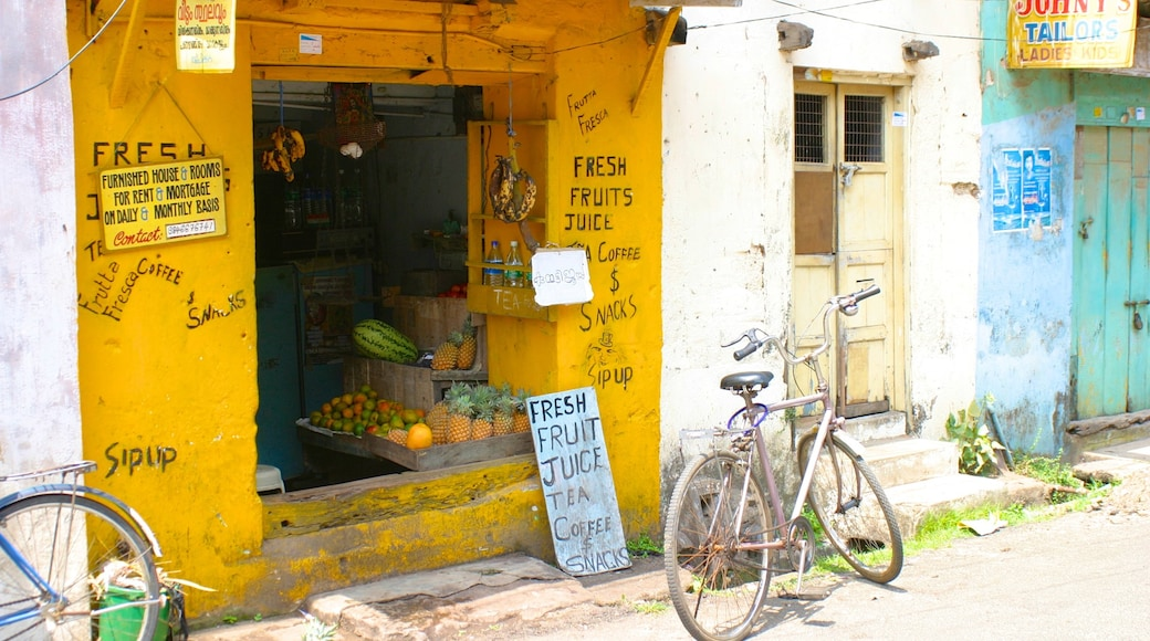 Cochin featuring street scenes, a small town or village and signage
