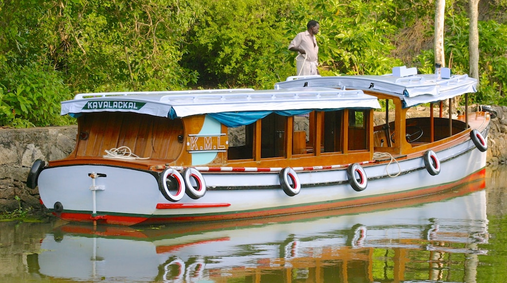 Cochin which includes a river or creek and boating as well as an individual male