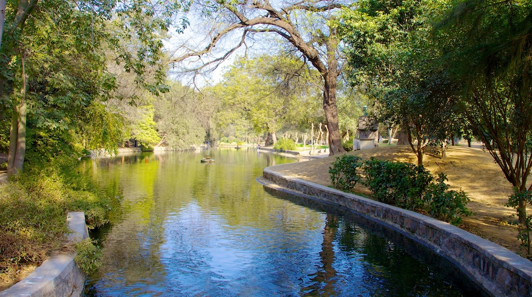 Lodhi Garden featuring a park and a pond