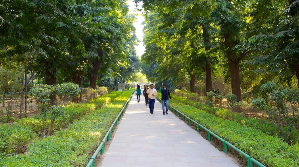 Lodhi Garden featuring a garden as well as a large group of people
