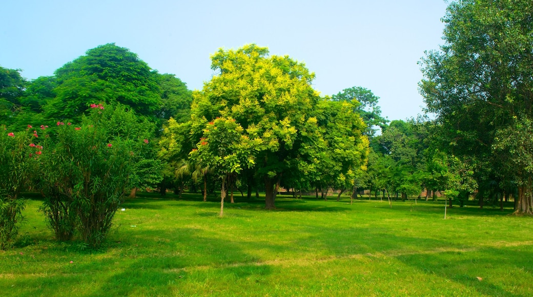 Humayun\'s Tomb which includes a garden
