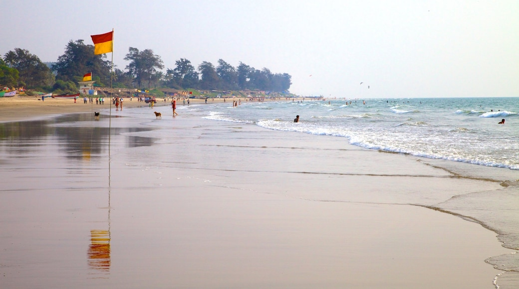 Arambol Beach which includes a sandy beach, tropical scenes and landscape views