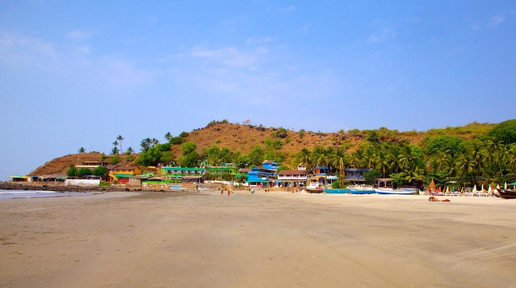 Arambol Beach which includes tropical scenes, a sandy beach and landscape views