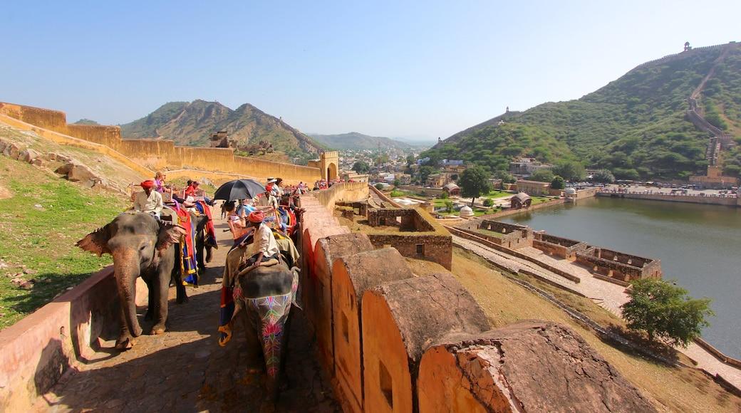 Amberin linnake johon kuuluu maaeläimet, maisemat ja pieni kaupunki tai kylä