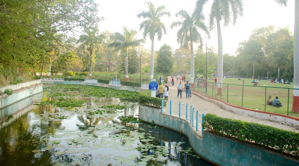 Saras Baug showing a pond and a garden