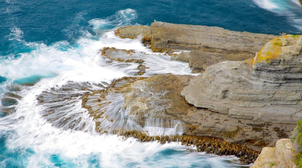 Southeast Tasmania featuring landscape views and rocky coastline