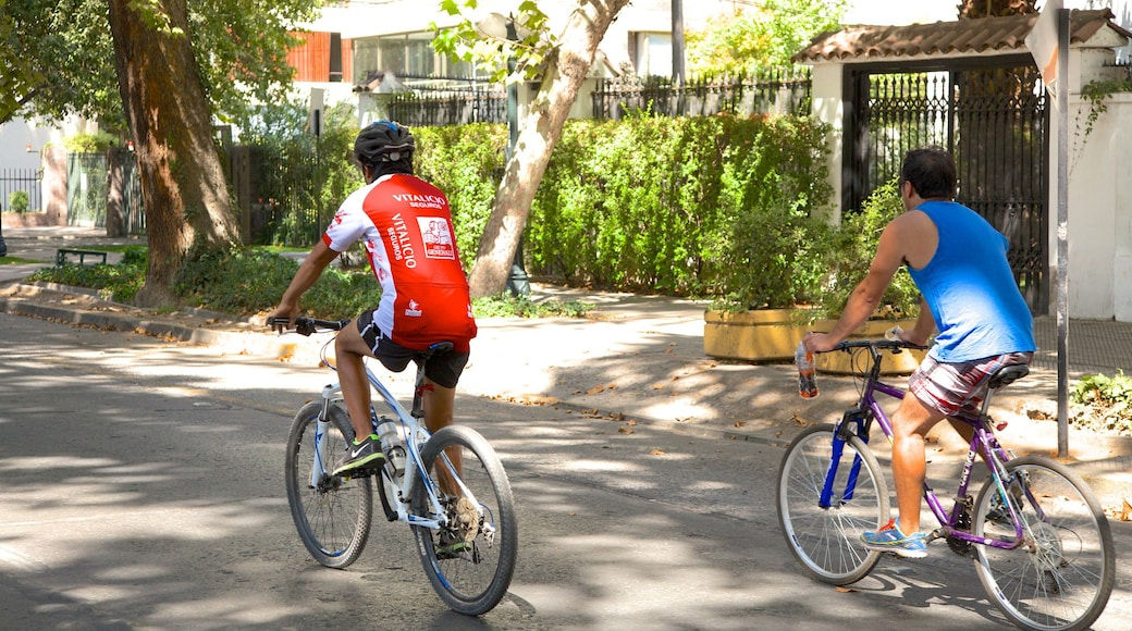 Providencia which includes cycling, a sporting event and street scenes