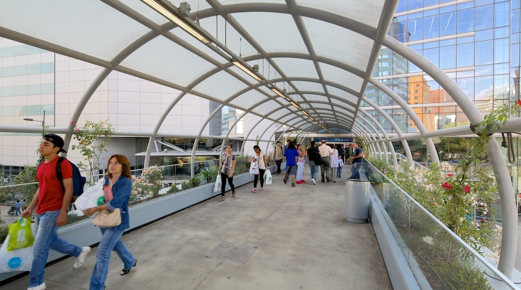 Costanera Center showing a city and a bridge as well as a large group of people