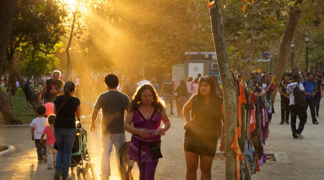 森林公園 设有 夕陽 和 花園 以及 一大群人