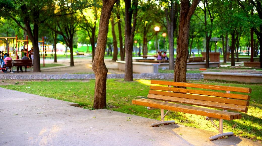 Parque Fundidora mostrando un parque