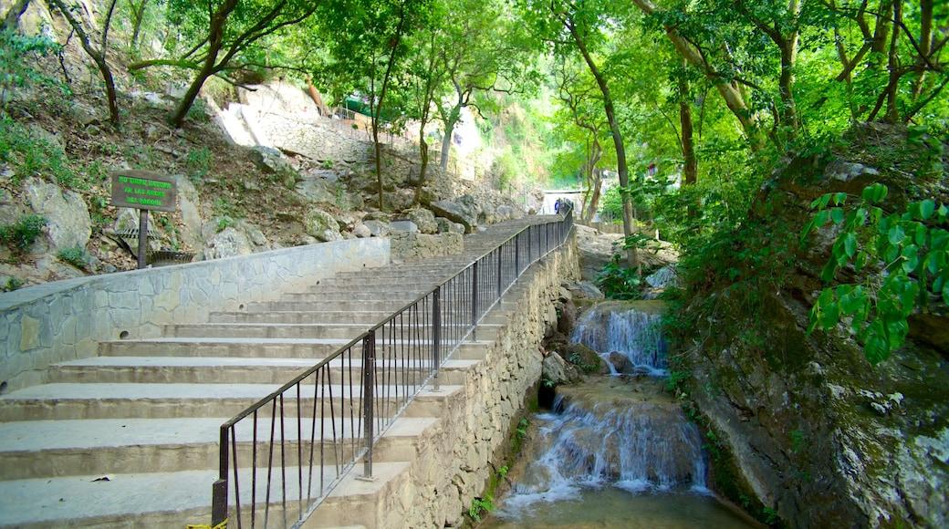 Cascada Cola de Caballo mostrando una cascada y un jardín
