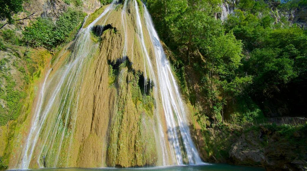 Cascada Cola de Caballo que incluye una cascada