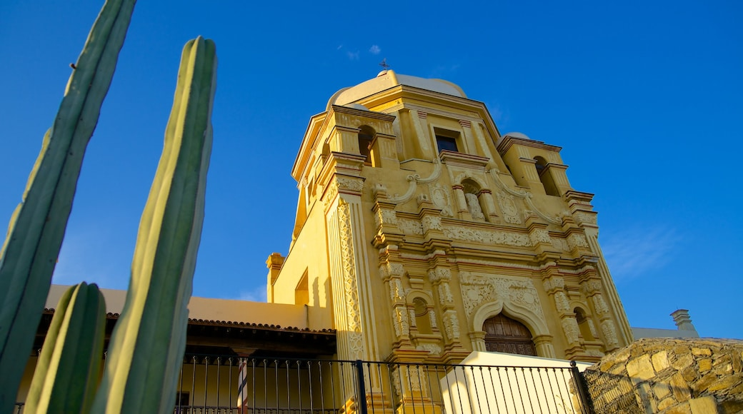 Museo del Obispado ofreciendo una iglesia o catedral