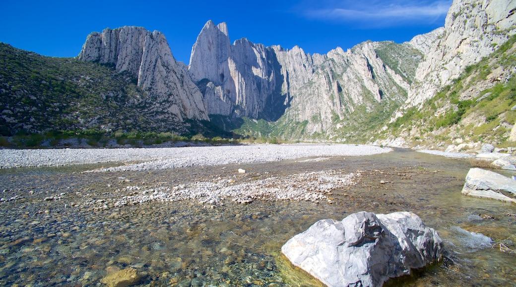 Canon de la Huasteca which includes a gorge or canyon and landscape views