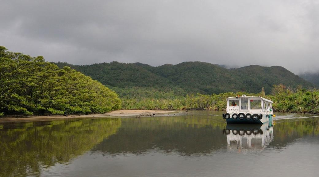 沖繩 其中包括 山水美景, 森林 和 湖泊或水池