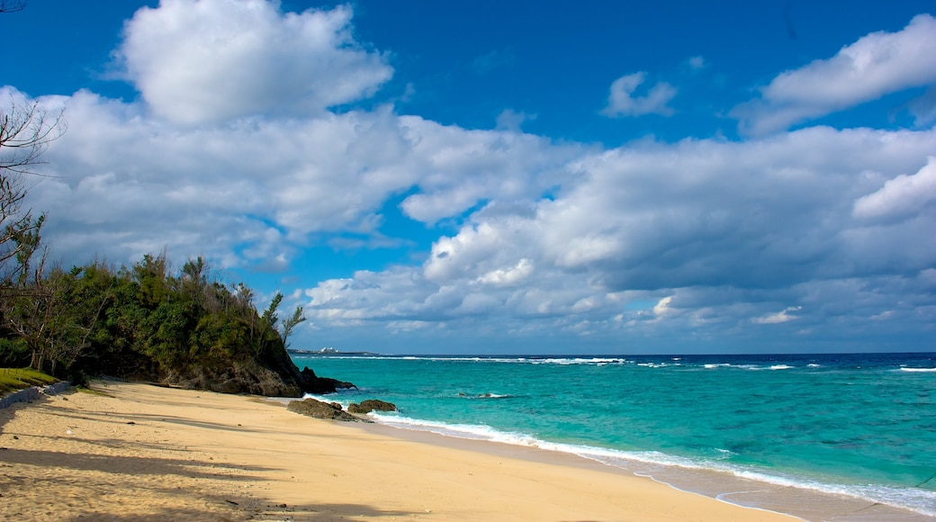 Kunigami which includes general coastal views and a sandy beach