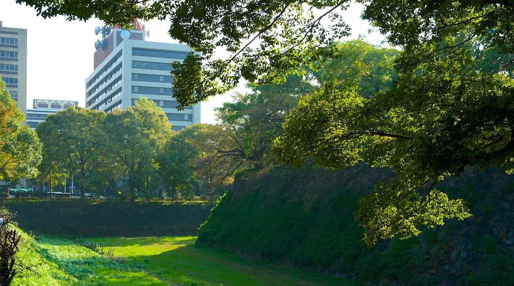 Nagoya Castle which includes a park