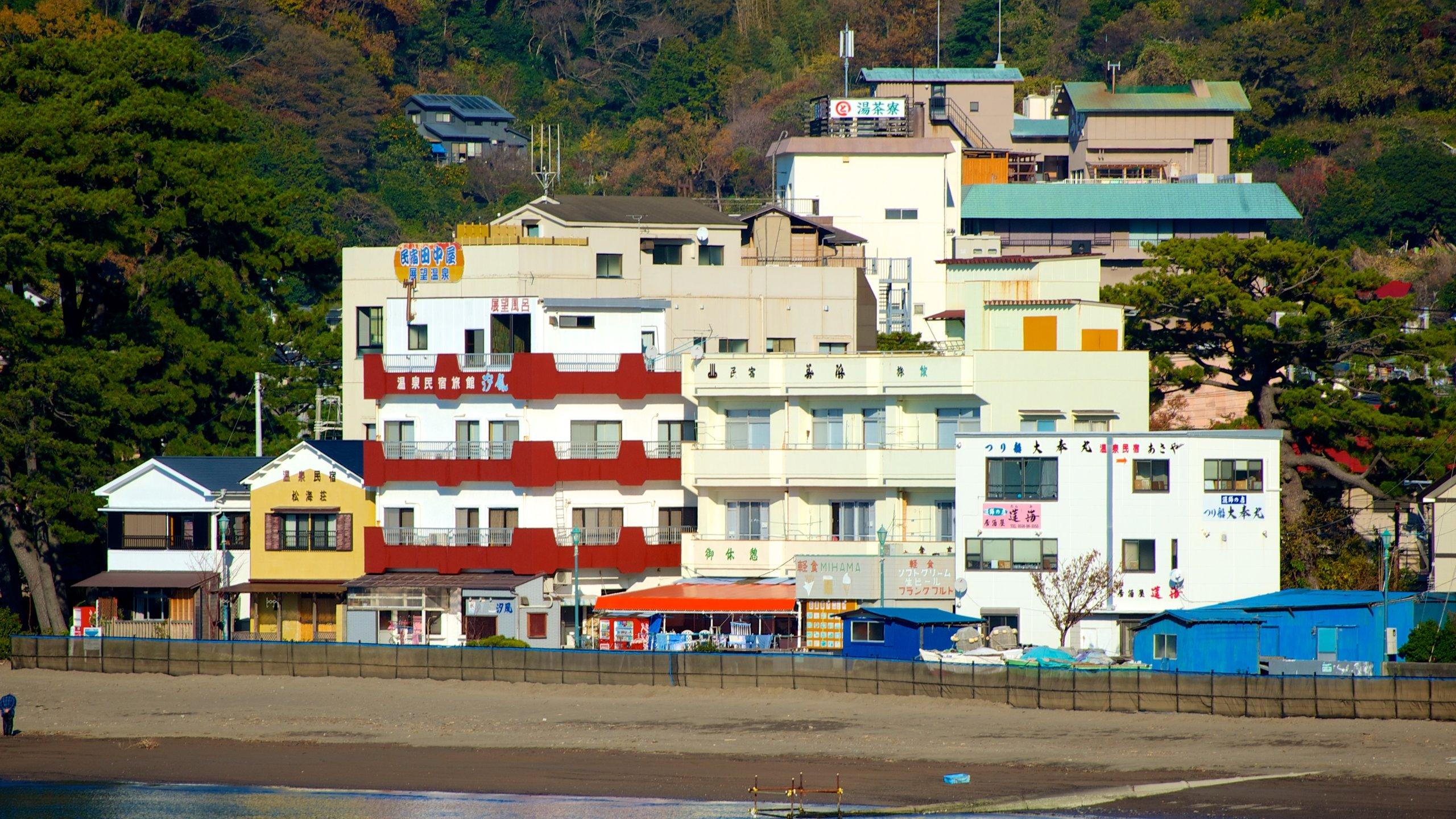 Izu, Shizuoka (prefectuur), Japan
