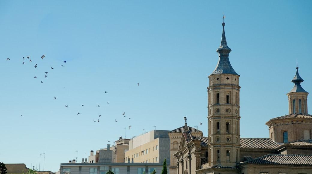 Plaza del Pilar som inkluderar ett torg, skyline och en kyrka eller katedral