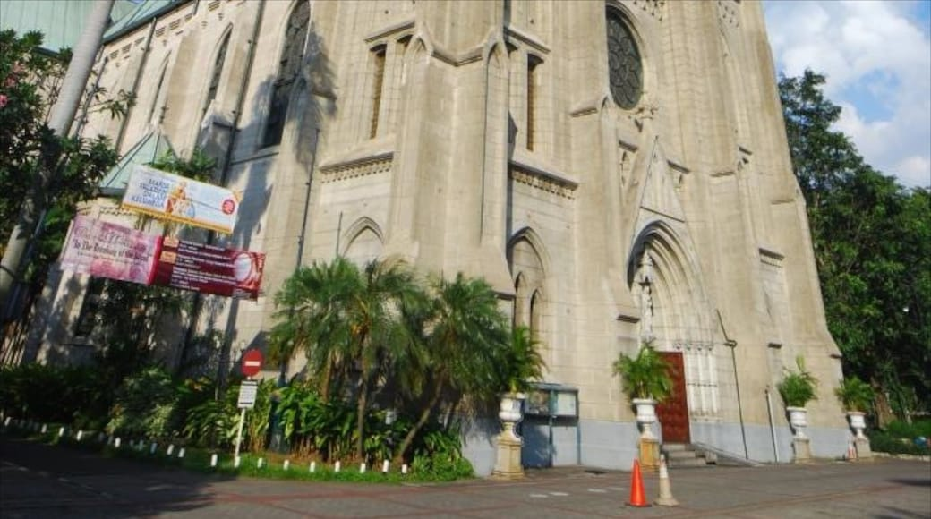 雅加達大教堂 设有 教堂或大教堂, 宗教方面 和 城市