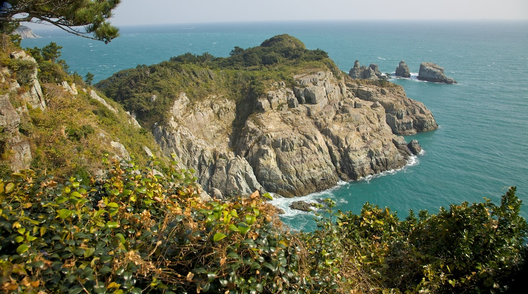 Oedo Paradise Island which includes landscape views and rocky coastline