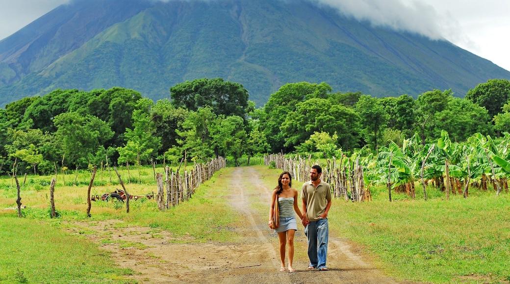 Ometepe mettant en vedette randonnée ou marche à pied, montagnes et ferme