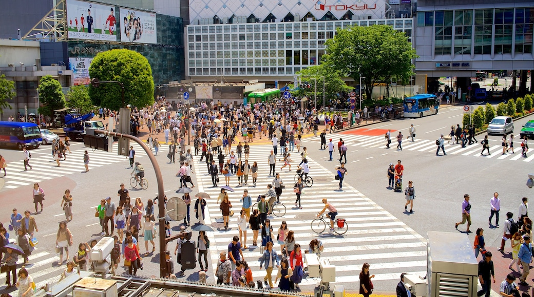 Shibuya Crossing featuring street scenes, a city and a square or plaza