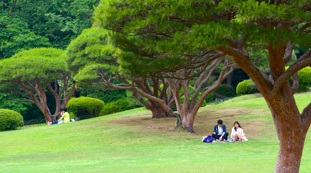 Shinjuku Gyoen National Garden showing a park and picnicking as well as a couple