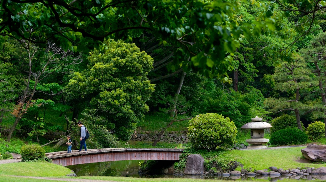 Shinjuku Gyoen National Garden featuring a park, forests and a bridge