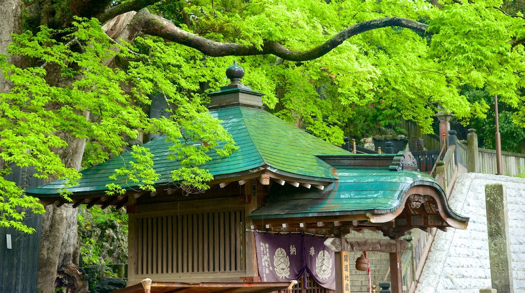 成田山新勝寺 呈现出 廟宇或禮拜堂 和 宗教元素