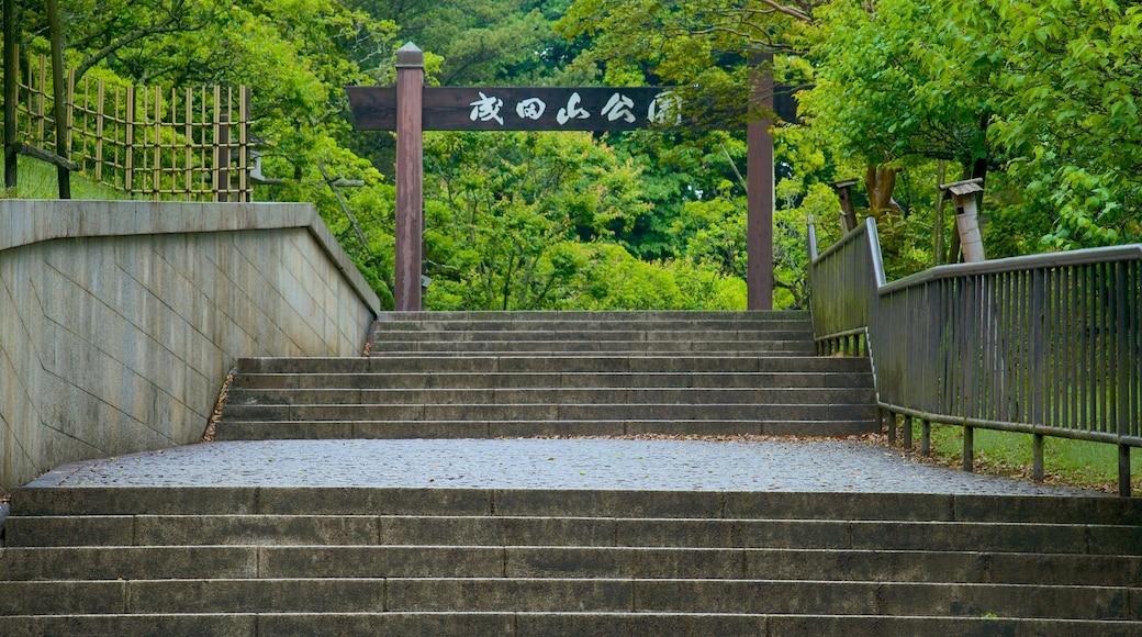 Kisarazu