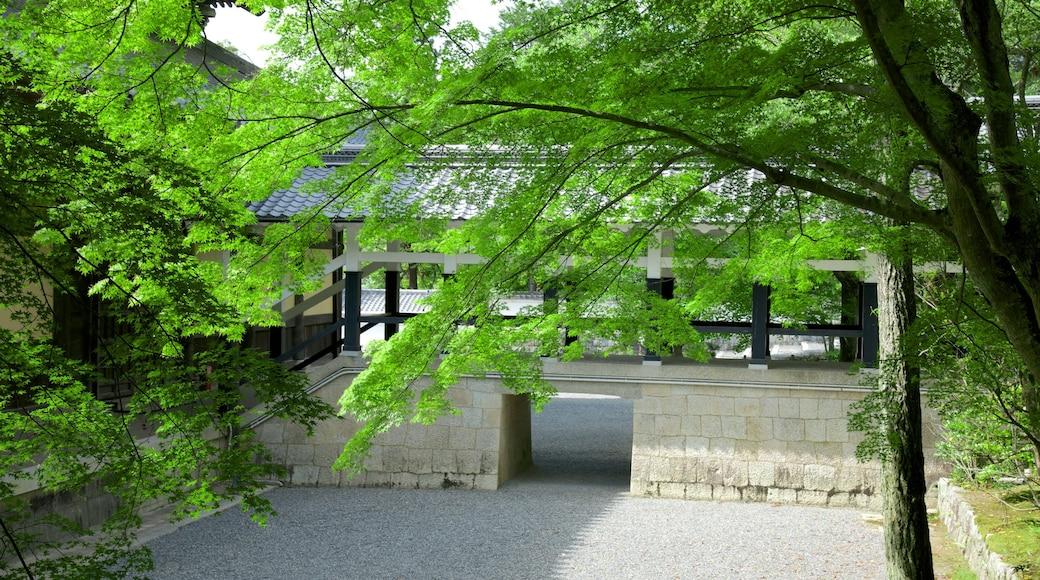 南禪寺 设有 廟宇或禮拜堂 和 宗教元素