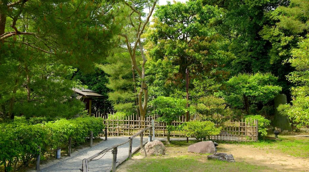 高台寺 呈现出 花園 和 森林