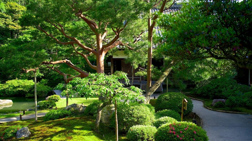 青蓮院 呈现出 廟宇或禮拜堂, 宗教方面 和 花園